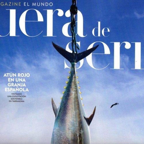 CFB - 2014 - 6-FueraDeSerie_290614_portada